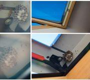gniazdo os w oknie dachowym na poddaszu