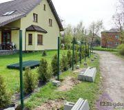 thuje brabant w ogrodzeniu, ogrodzenie panelowe a tuje