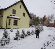 listopadowy atak zimy