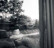 Julcia w oknie