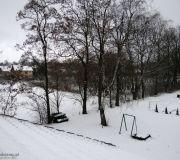 Zimowy widok z okna dachowego na alejke