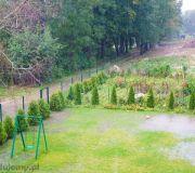 zalewanie działki podczas deszczów