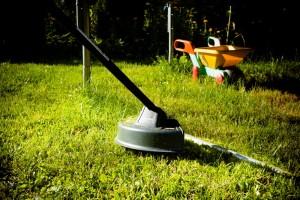 greenworks GD40BC 40v
