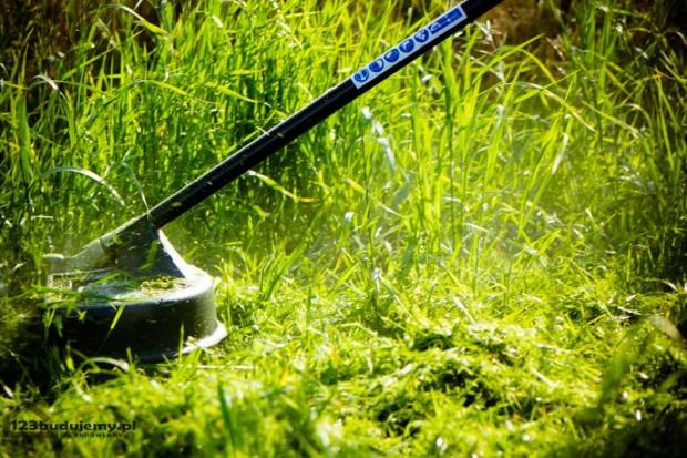 greenworks GD40BC podkaszarka kosa na akumlator