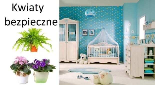 jakie rośliny nadają się do pokoju dziecka