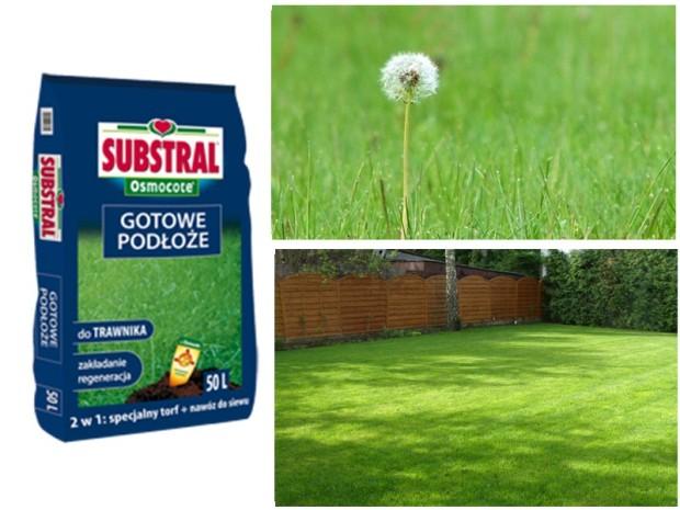 SUBSTAL-Gotowe-podłoże-do-trawnika