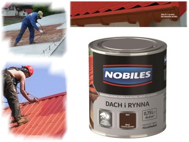 Nobiles-Dach-i-Rynna-opinie