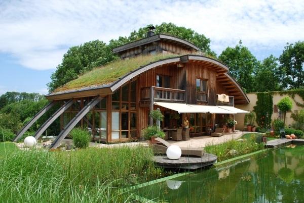 rośliny na dachu