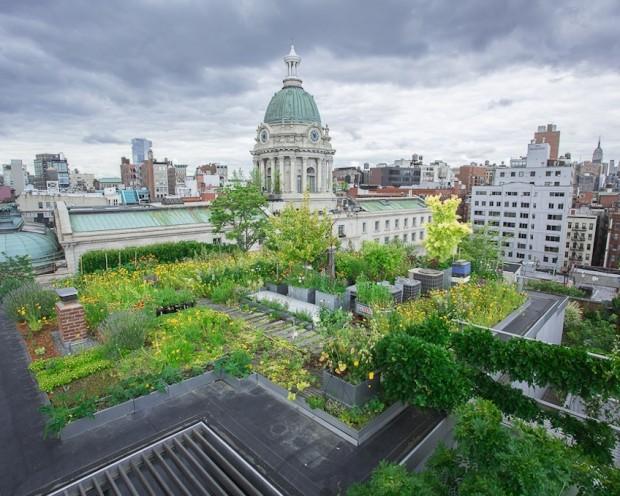 ogród i taras na dachu