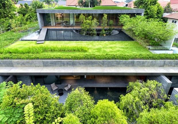 rośliny które nadają się na dach