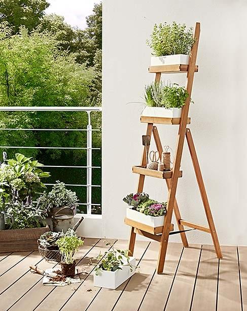 zielnik na balkonie