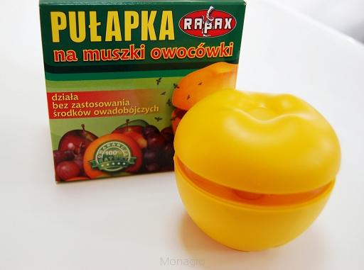 pułapka na muszki owocówki