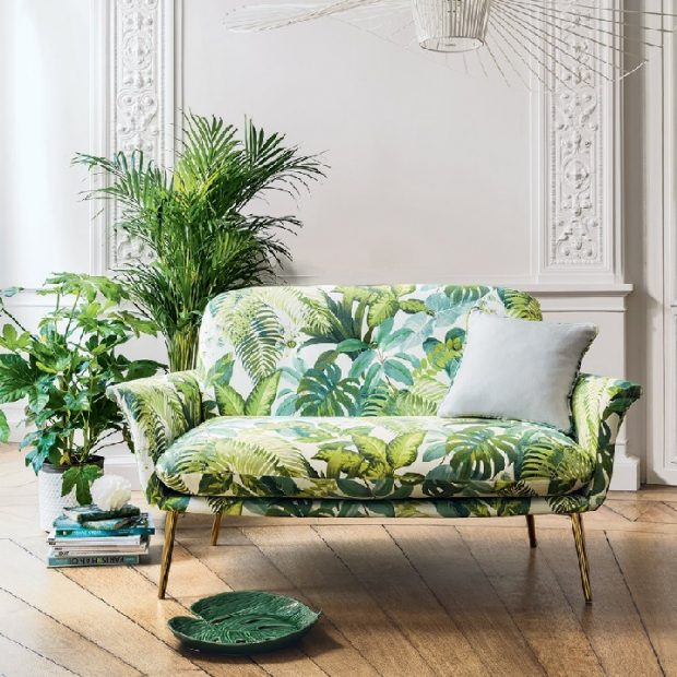 rośliny do salonu