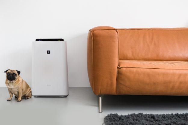 oczyszczacz powietrza w pokoju