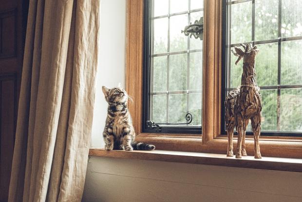 eleganckie okno drewniane