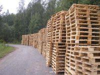 Ukraina. Wspolpraca. Drewno 15 zl/m3. Produkcja europalet, desek